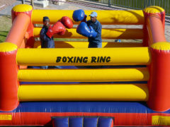 48. Boxing Ring